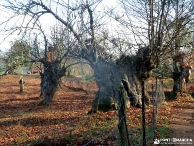 Sierra Aracena-Minas RíoTinto;caminatas sierra madrid rutas de senderismo comunidad de madrid senda